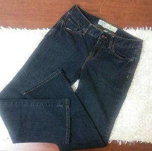 Ann Taylor LOFT Original Boot Jeans